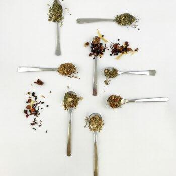 Teekräuterkunde